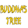 Buddhas Tree - Coco Nutrients