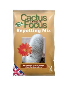 GT Cactus Focus Repotting Mix 2L