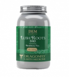 Dragonfly Earth Medicine Lush Roots 840