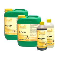 Ferro NFT Bloom A+B 10L / Greater London