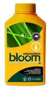 Bloom Groigen