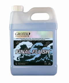 Final Flush 1L Regular