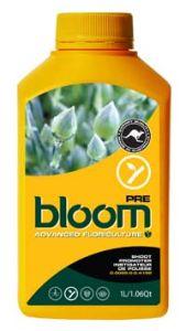 Bloom Pre