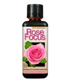 Rose Focus 300ml