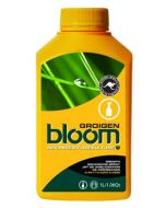 Bloom Groigen