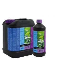 BCuzz Hydro Nutrient A&B