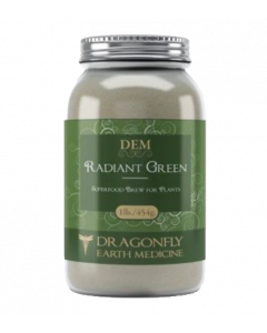 Dragonfly Earth Medicine Radiant Green 454g