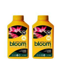 Bloom Flower A+B