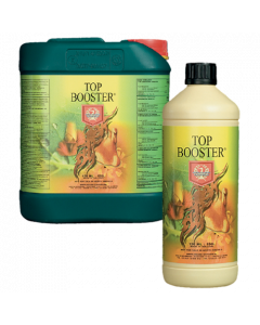 House and Garden Top Booster