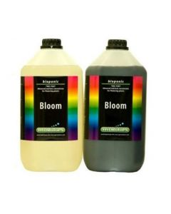 Hydrotops Coco Bloom A+B