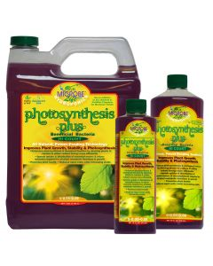 Microbe Photosynthesis Plus