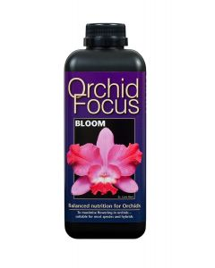 Orchid Focus Bloom 300ml