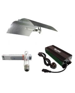600W HID Lighting Kit