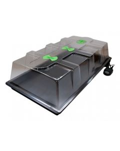 Xstream Large Scale Heated Propagator
